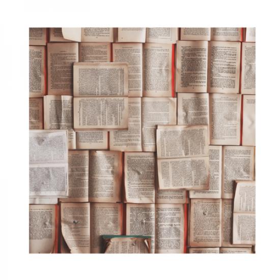 bücherregal-minimalismus-bücher-lesen-aussortieren