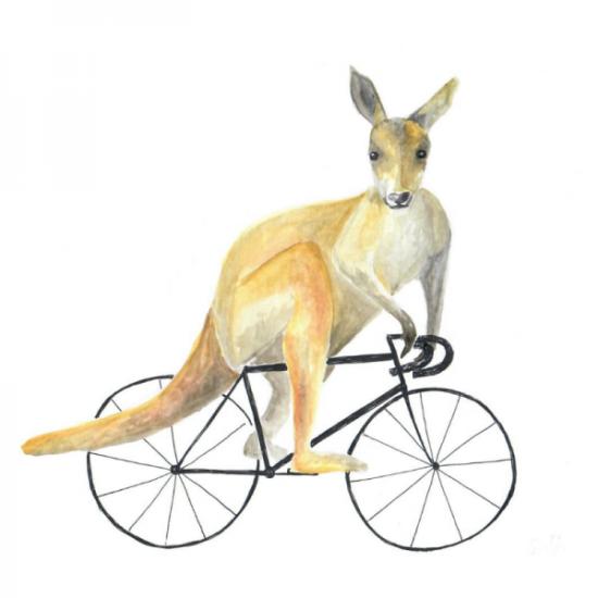inside-the-scene-standert-kanguru-fahrrad-rennrad-berlin