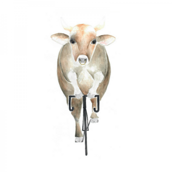 Kuh-Fahrrad-Rennrad