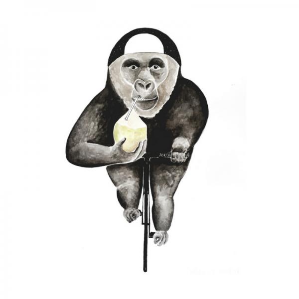 Gorilla-Affe-Fahrrad-Kokusnuss-Rennrad-Vegan