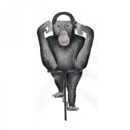 Schimpanse Affe Fahrrad Rennrad Affe auf Rad