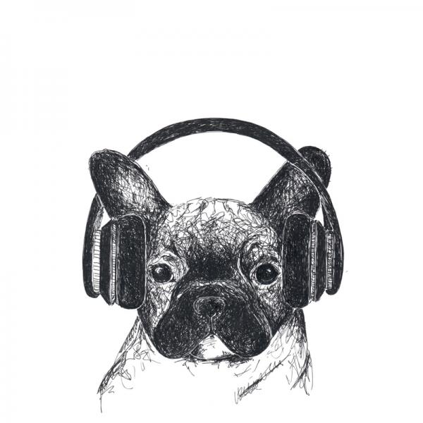 Bulldogge-Welpe-Köpfhörer-Musik-hören-Illustration-Zeichnung