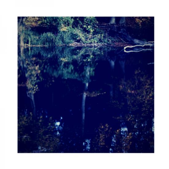 Wahre-worte-herbst-zitate-minimalismus