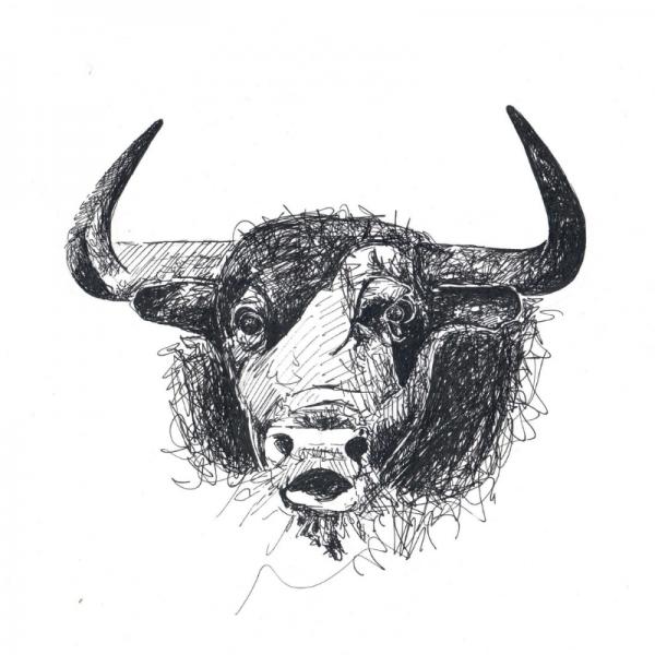 ulli-bull-vegan-poem